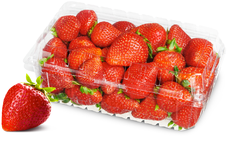 Fresh staweberries